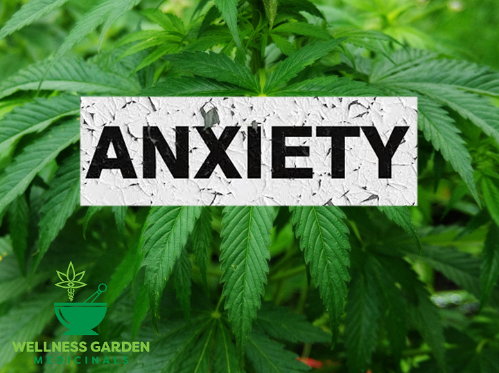 CBD Use for Anxiety: Will It Work?