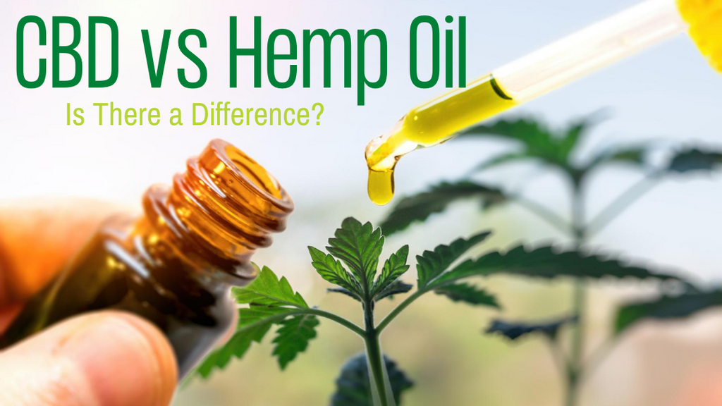CBD vs Hemp Oil: Is There a Difference?