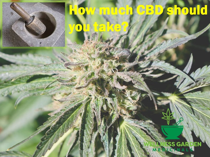 CBD Dosing for Natural Pain Relief and Anxiety Relief