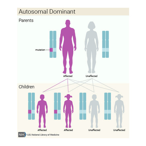 cbd-22q112ds-digeorge-syndrome-autosomal-dominant