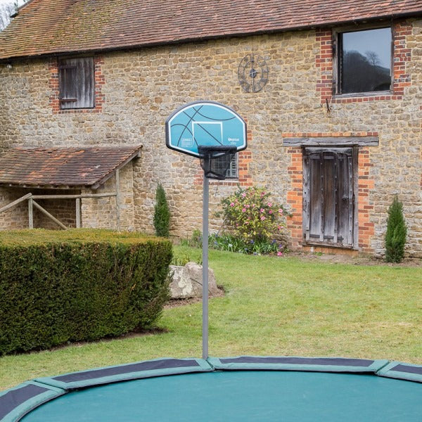Basket ball hoop in garden