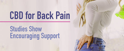 CBD for  Back Pain - Studies Show Encouraging Support