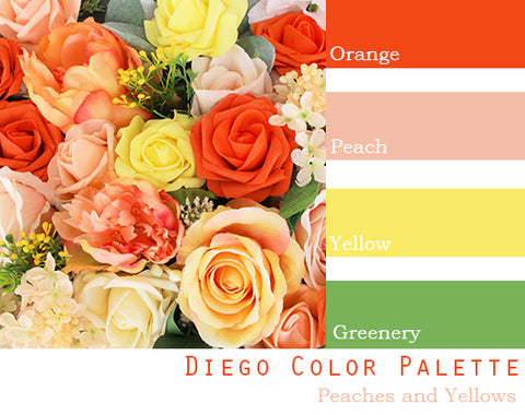 Diego Color Palette - $250 Package