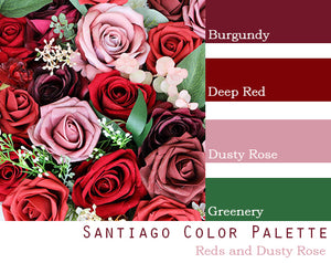 Santiago Color Palette - $250 Package