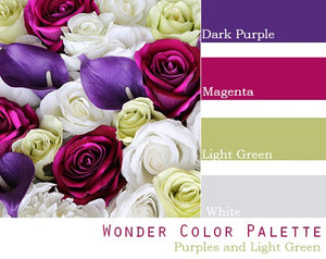 Wonder Color Palette - $100 Package