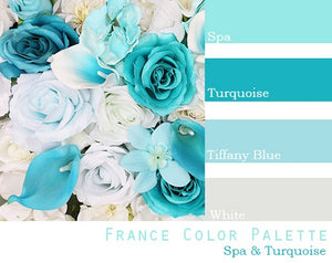 France Color Palette - Elopement Package