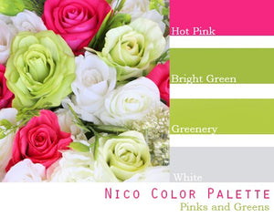 Nico Color Palette - $100 Package