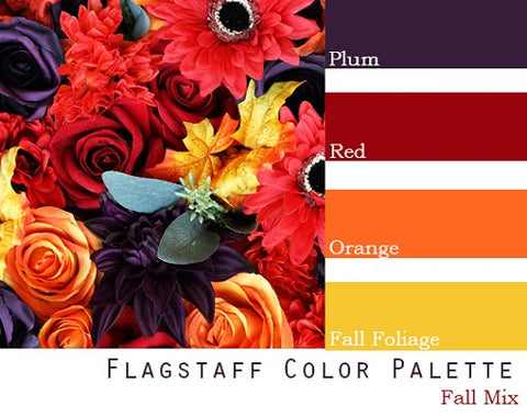 Flagstaff Color Palette - Elopement Package