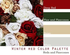 Winter Red Color Palette - Elopement Package