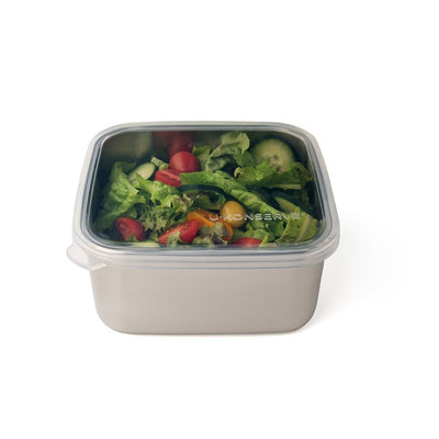 Stainless Steel Containers with Silicone Lids