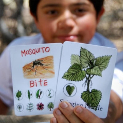 child, boy, holds two oversized game cards, left reads mosquito bite, right reads stinging nettle, both with illustrations