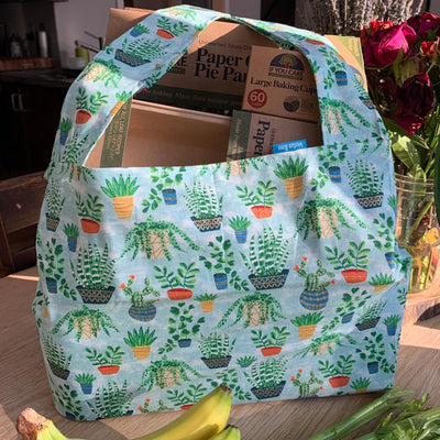 "potted succulent design shopping bag filled with cardboard ""if you care"" products."