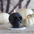 Black beeswax skull candle with lit flame, white pumpkin gords in the background