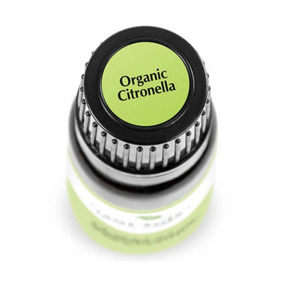 "birds eye view of black bottle with green label. reads ""organic citronella"" 10 ml"