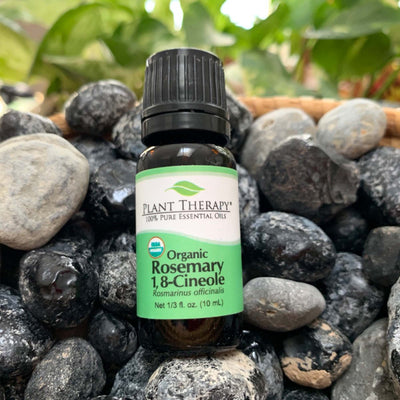 10 ml black bottle with green label. (organic rosemary 1, 8-cineole) essential oil blend displayed on assorted rocks