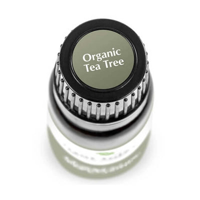 "birds eye view of 10 ml black bottle with grey label. reads ""organictea tree"""""
