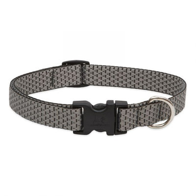 grey dog collar with black plastic tightener, clasp, and silver d ring