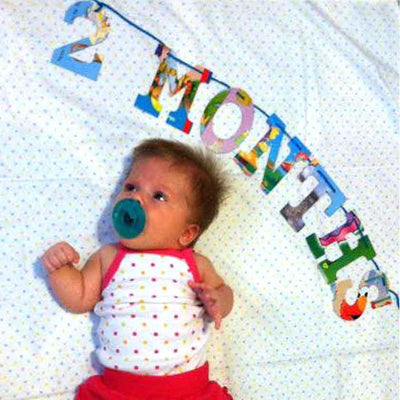 Board Book Garland — Baby's Monthly Milestone Kit