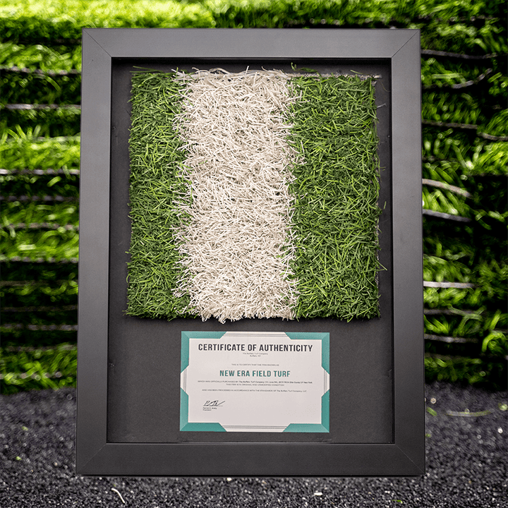 "10"" Yard Line - Shadow Box"