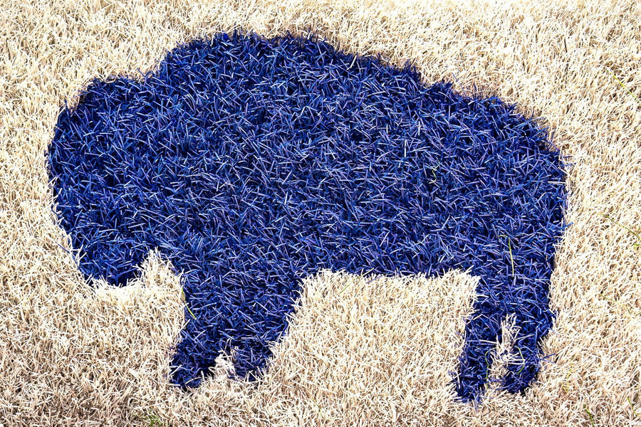 Buffalo Inlay - Side Line & End Zone (LIMITED)