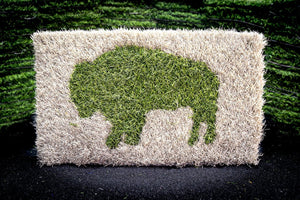 Buffalo Inlay - Sideline & Field