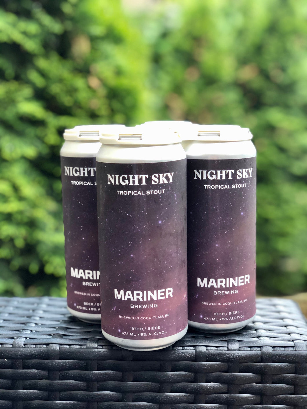 Night Sky Tropical Stout