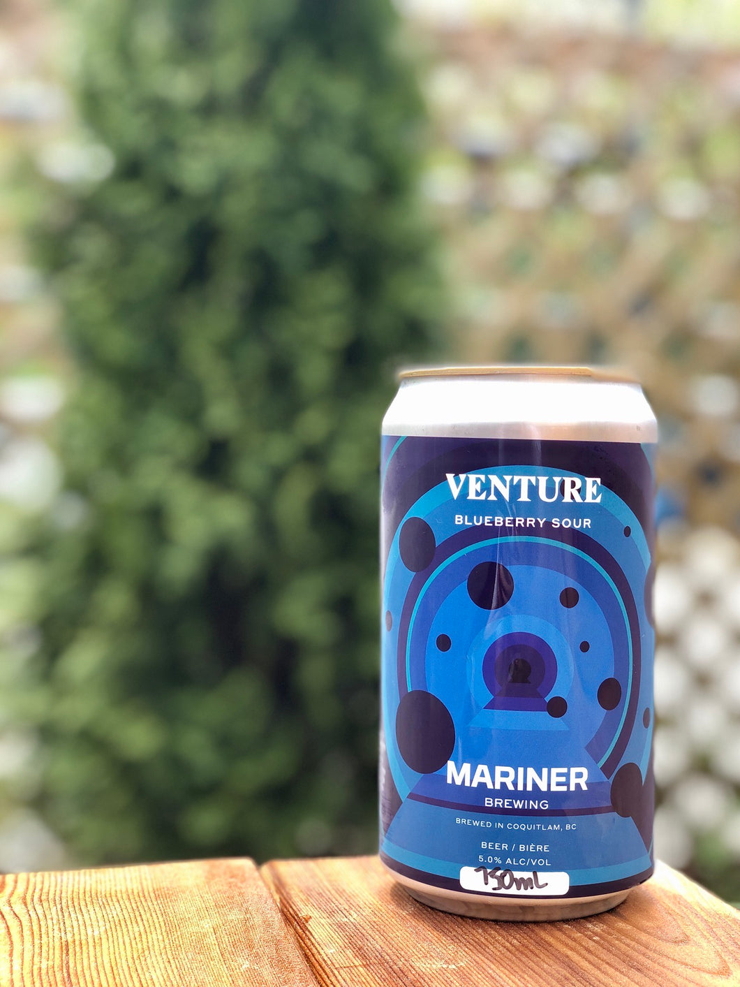 750ml Venture Blueberry Sour Crowler