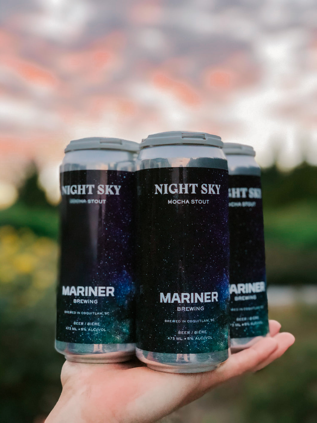 Night Sky Mocha Stout