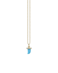 TURQUOISE HORN NECKLACE