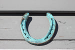 Oxidized Horseshoe