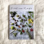 Plants Are Magic Volume 2: Local Plants