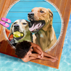 Custom Designed Pet Beach Blanket