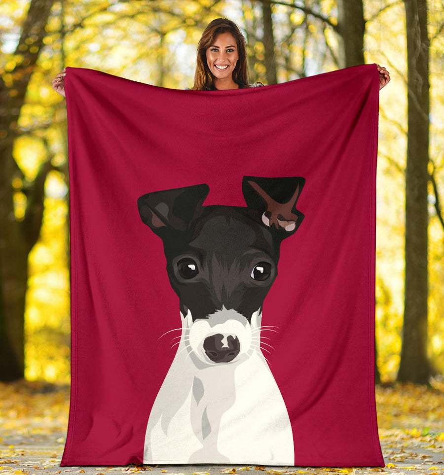 PA1077 Harley Youth Blanket