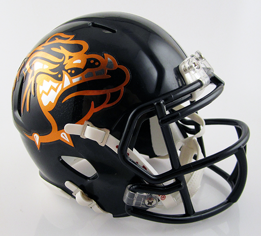 Dalton, Mini Football Helmet - T-Mac Sports