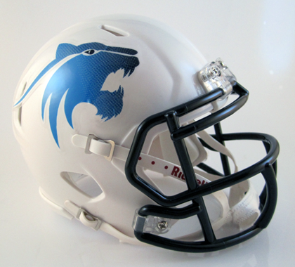 Har-ber (AR), Mini Football Helmet - T-Mac Sports