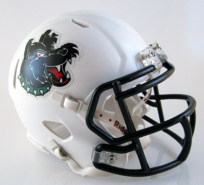 Helix, Mini Football Helmet - T-Mac Sports