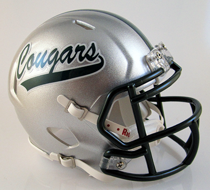 Lake Catholic, Mini Football Helmet - T-Mac Sports