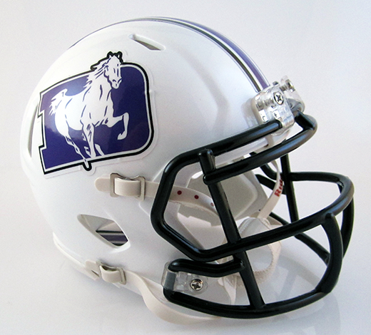 St. Francis DeSales (Columbus) (2012), Mini Football Helmet - T-Mac Sports