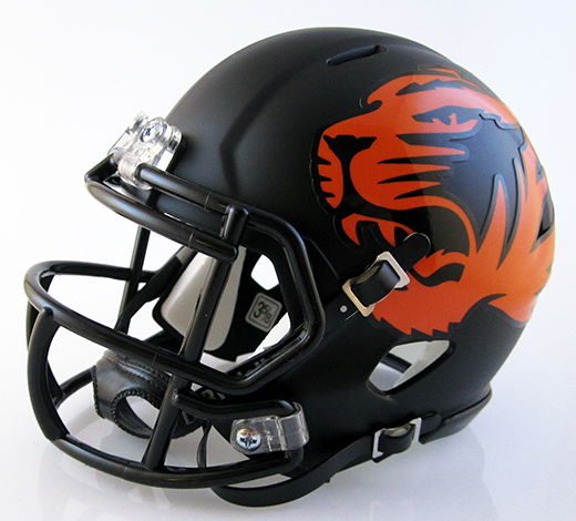 Washington (Massillon) (2013), Mini Football Helmet - T-Mac Sports