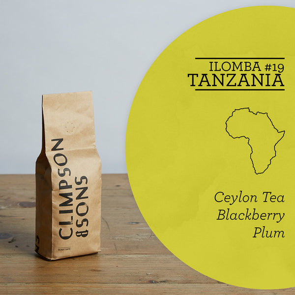 Single Origin: Ilomba #19, Tanzania
