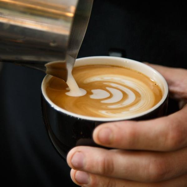 SCA Barista Skills - Foundation Course