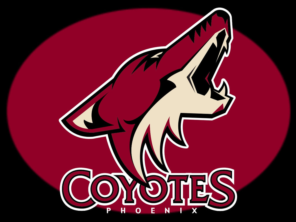 Image result for phoenix coyotes