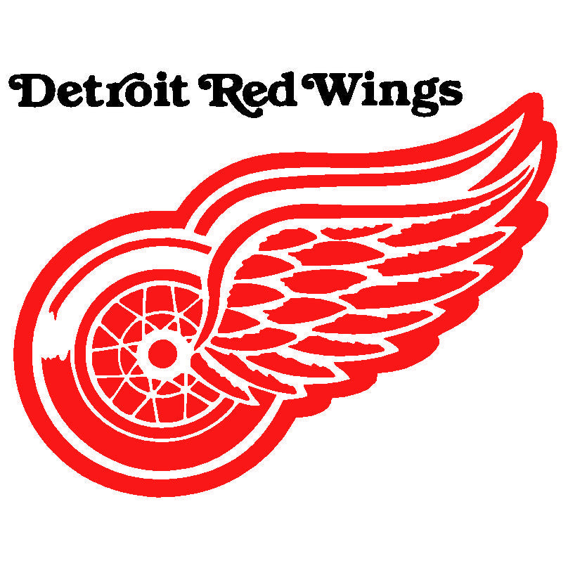 detroit red wings vs