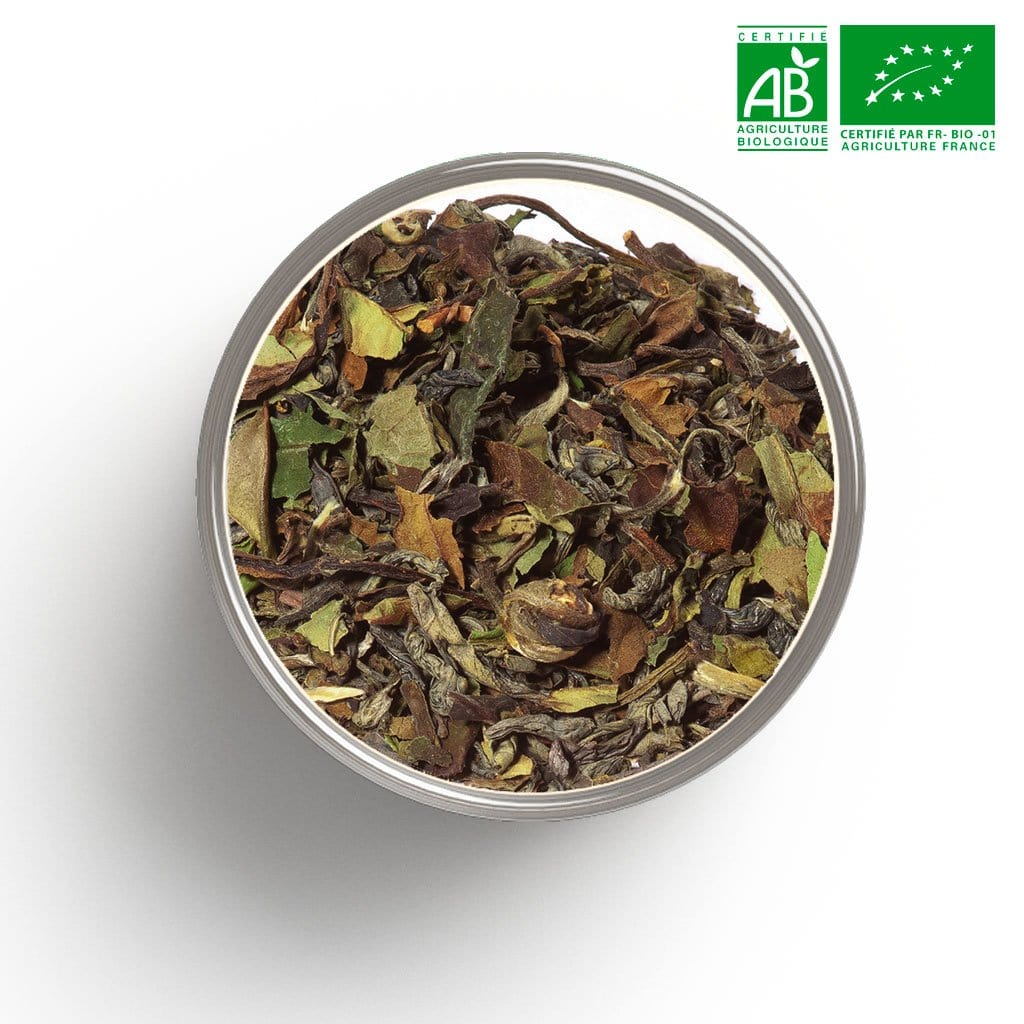 Thé blanc nature White Tea Superior Blend BIO en vrac 1 Kg