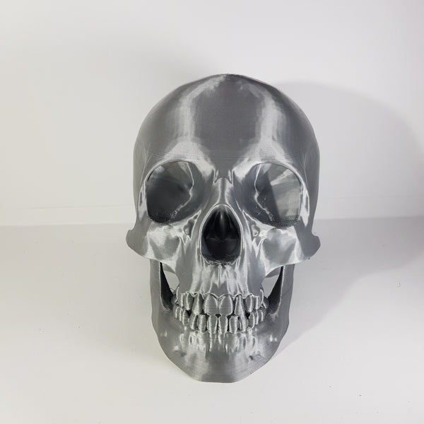 premium silver 3d printed skull by 3d printing revolution -printed with 3dfillies.com plasteel silver