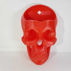 Wall Hanging Skull Planter Pot