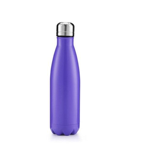 Bouteille Isotheme <br> Inox Purple