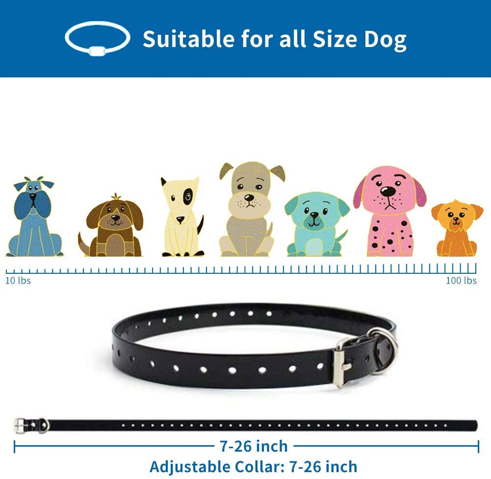 PawRoll Dog Training Collar