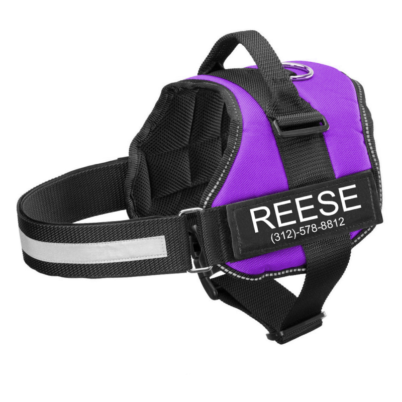 New Personalized PawRoll™ No Pull Dog Harness (2020)
