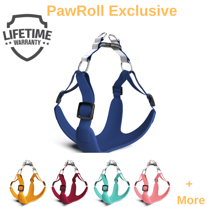 PawJoy™ No Pull Dog Harness (2020)